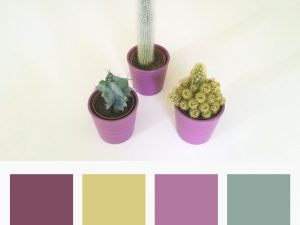Colours Inspiration for Baby Products
