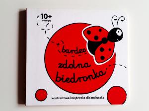 Ladybug – Beautiful Children Book Design