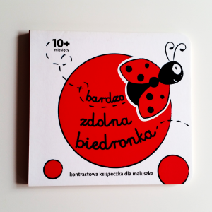 Ladybug – Beautiful Children Book Design