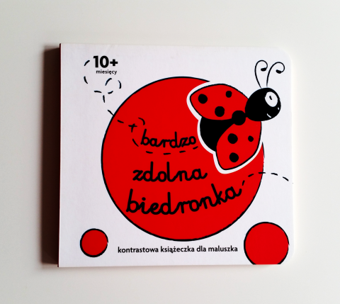 Ladybug - Beautiful Children Book Design